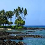 Hawaiian State Senate Says 'Aloha' To GMO Custom Food Labels